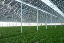 انرژی نو برای اولین بار در خدمت کشاورزی قزوین قرار گرفت