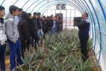 هنرستان کشاورزی در تیران و کرون ایجاد می شود
