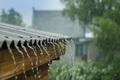 بیش از 22 میلیمتر باران در یاسوج بارید