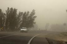 توفان همراه با گرد و خاک استان یزد را در نوردید