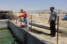 ۲۱ هزار بچه ماهی در استخرهای کشاورزی گتوند رهاسازی شد