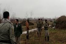 1200متر انواع دام هوایی پرندگان در لاهیجان کشف و جمع آوری شد