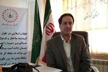 4500 برنامه تا پایان دهه فجر در کردستان برگزار می شود