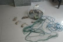دستگیری شکارچیان غیرمجاز پرندگان در تنگستان بوشهر