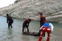 تعداد جانباختگان رودخانههای البرز به 17 نفر رسید دو جسد مفقود است
