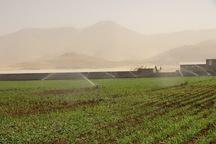 پنج هزارهکتار از اراضی روانسر مجهز به سیستمهای آبیاری شد