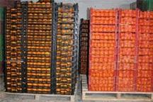 13 ایستگاه توزیع میوه شب عید در مهاباد برپا شد