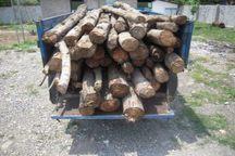 کشف سه تن چوب جنگلی قاچاق در رودبار