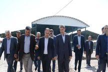 استاندار آذربایجانغربی از روند ساخت کشتارگاه صنعتی ارومیه بازدید کرد