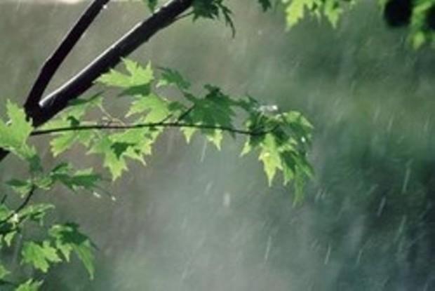 افزایش بارش های امسال گلستان