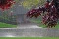 بارندگی بهاری در بوکان 87 درصد افزایش یافت