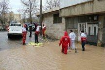 هفت تیم ازبوشهر به مناطق سیل زده لرستان اعزام شد