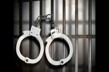 دستگیری ۶ تن از عوامل اصلی اغتشاشات غرب استان تهران