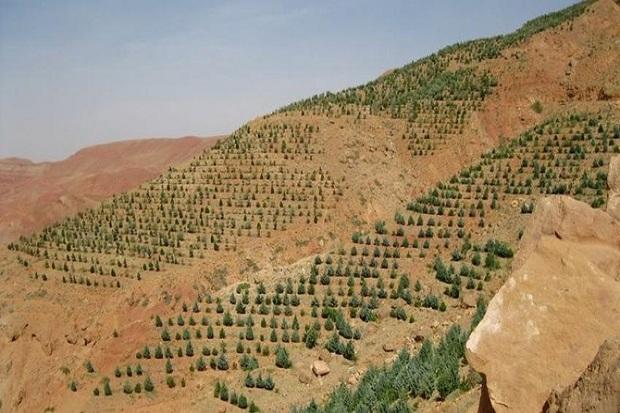 صیانت از محیط زیست حرکت به سوی توسعه پایدار