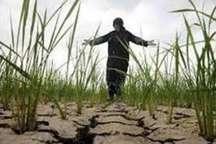 کاهش 20 درصدی بارندگی درمازندران
