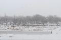 بارش برف بهاری در برخی از مناطق شیروان آغاز شد