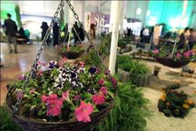 نمایشگاه گل و گیاه در همدان گشایش یافت