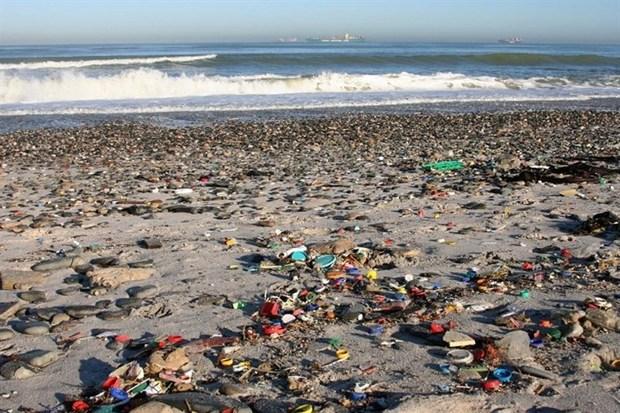 ورود پسماندها به دریا در استان بوشهر نیازمند مدیریت است