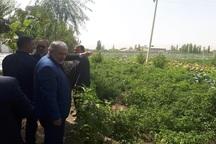 محدودیتی برای اجرای آبیاری نوین در آذربایجان غربی وجود ندارد