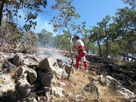آتش سوزی کوه ادیو اندیکا مهار شد