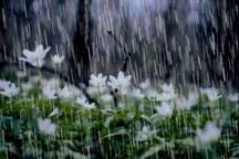سامانه بارشی در مسیر خوزستان است