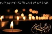 استاندار لرستان درگذشت آمیر احمد تقوی را تسلیت گفت