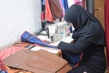 اشتغال زنان از اولویت های وزارت کشور است