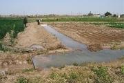 توضیح نظام صنفی کشاورزی امیدیه در خصوص تجمع کشاورزان