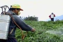 همکاری فارغ التحصیلان دانشگاهی برای افزایش بهره وری کشاورزی در همدان