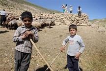 155 کودک بازمانده از تحصیل در قزوین شناسایی شدند