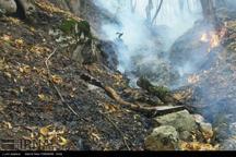 بخش هایی از جنگل ابر دچار آتش سوزی شد