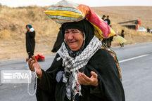 پیرزن ۸۳ ساله و طفل سه ماهه مسنترین و کوچکترین زائر پیاده امام رضا (ع)