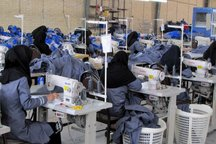 433 فرصت شغلی برای مددجویان کمیته امداد همدان ایجاد شد