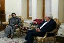ظریف: ایران آماده همکاری با صندوق جمعیت سازمان ملل است