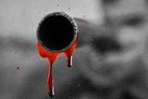قاتل متواری توسط پلیس زنجان دستگیر شد