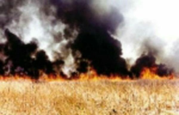 سوزاندن بقایای مزارع، راهی برای فرسایش خاک و آلودگی هوا