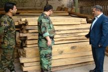 قاچاقچیان چوب زیر ذره بین پلیس و ماموران منابع طبیعی استان تهران