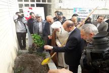 کاشت نهال با حضور امام جمعه و استاندار قزوین در منزل یک شهید