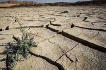 دشت های آبی بوشهر هر روز تشنه تر از دیروز