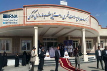افتتاح 26 طرح بهداشت و درمان تربت حیدریه آغاز شد