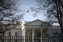 حمله عنکبوت ها به کاخ سفید+ عکس