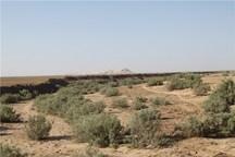 10 هزار مترمربع زمین ملی در داورزن رفع تصرف شد