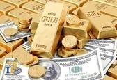 کاهش قیمت تمام سکه و نیم سکه در بازار امروز رشت  ربع سکه گران شد