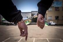 سارقین سابقه دار در بردسکن دستگیر شدند