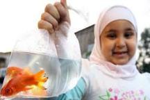 ماهی ها و سبزه های نوروزی در بوستان های تبریز جمع آوری می شود