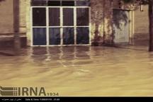 بارش باران 10 واحد مسکونی ماهان کرمان را دچار آبگرفتگی کرد
