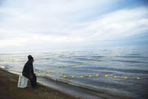 صید آبزیان دریای خزر در گلستان 18 درصد کاهش داشت