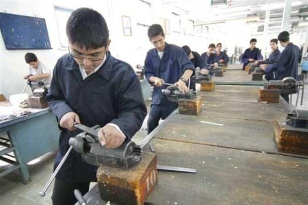 تربیت نیروی کارآفرین نیاز ضروری جامعه ماست