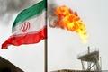 روسیه: تصمیم ژاپن برای توقف واردات نفت از ایران را نتیجه تهدید آمریکا میدانیم