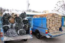 کشف بیش از 5 تن چوب قاچاق در دامغان